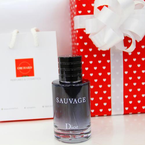 Dior Sauvage 2015 1